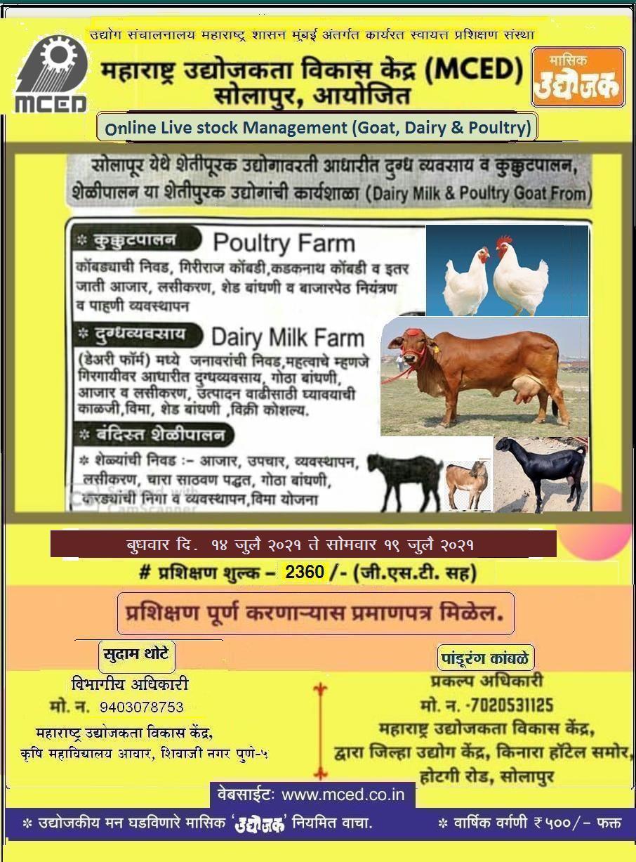 Livestock Management (Goat, Dairy &Poultry Farm)